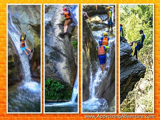 mapawa-nature-park-collage